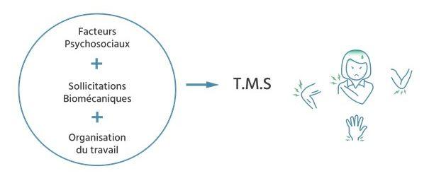 Schéma causes TMS